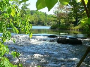 Salmon River Rapids